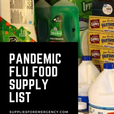 Food Supplies for a Pandemic Flu