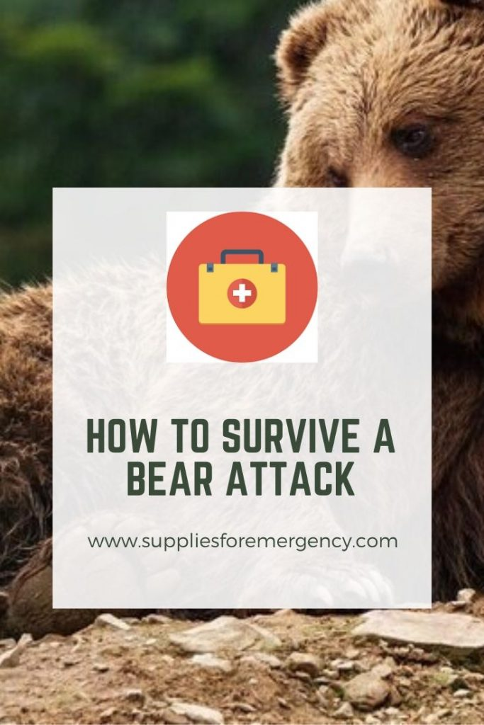 how-to-survive-a-bear-attack